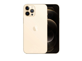 iPhone 12 Pro Max 6.7 inch
