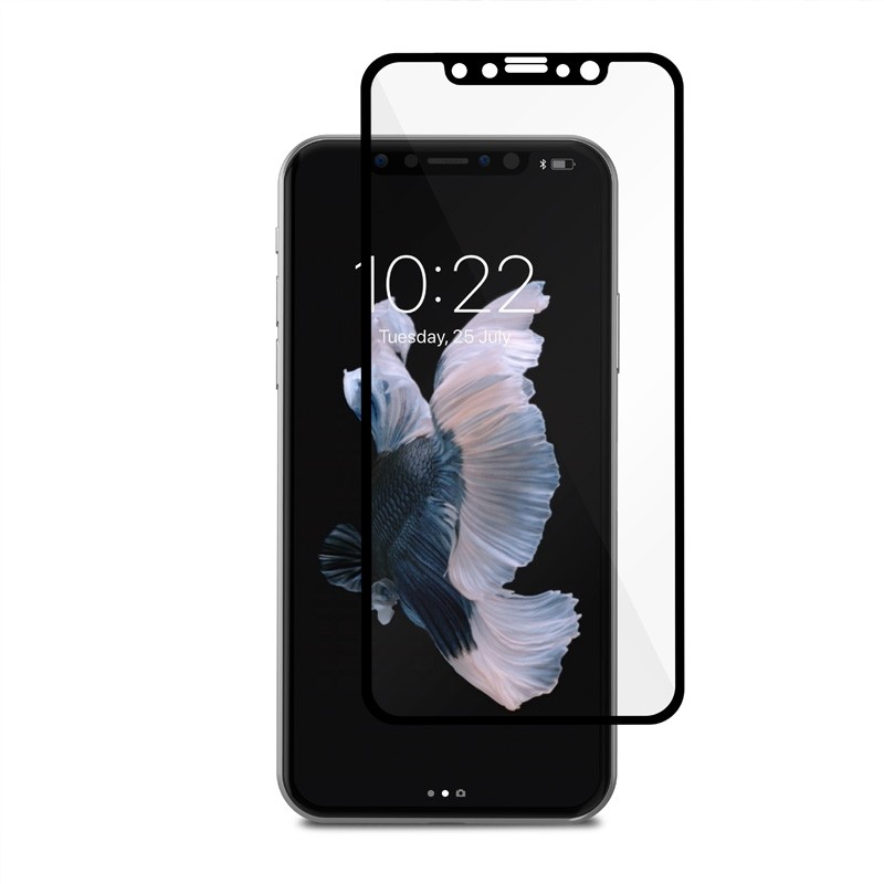 Moshi IonGlass iPhone X/Xs Black/Clear - 1