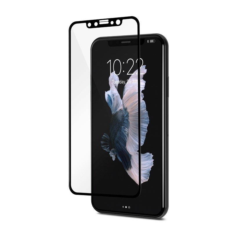 Moshi IonGlass iPhone X/Xs Black/Clear - 2